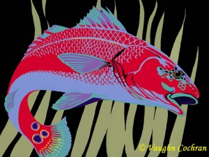 <em>Redfish Bright</em>